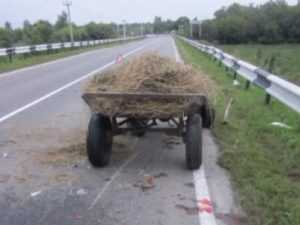 На трассе Брянск-Новозыбков  иномарка протаранила  повозку