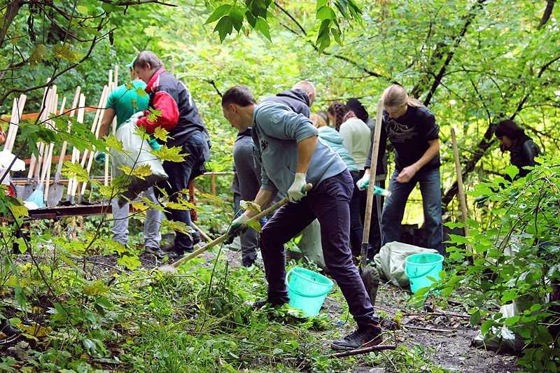 Брянские экологи в Судке расстреляют мусор из рогатки