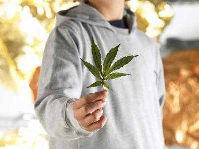 Брянского подростка будут судить за торговлю марихуаной и грабёж