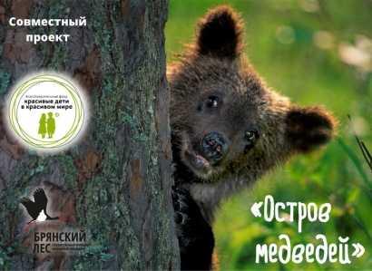 В заповеднике «Брянский лес» появился «Остров медведей»