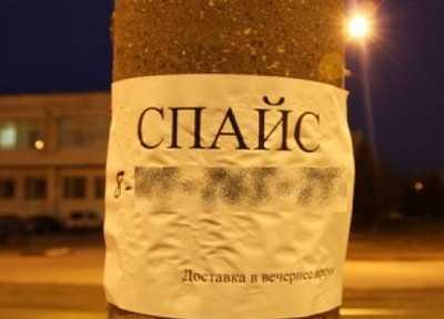 В Брянске сегодня завершится антинаркотический субботник