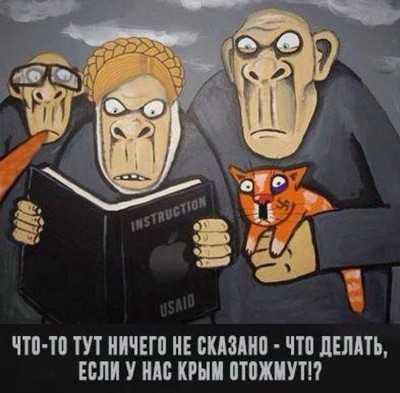 За брянской границей наконец-то поймали российских «диверсантов»