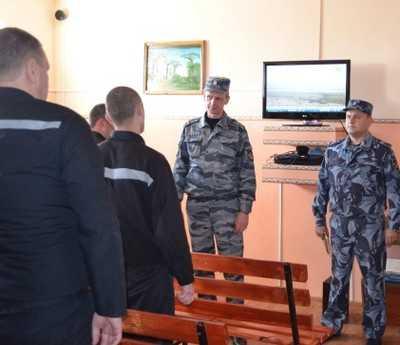 Брянские заключенные начали работать на «Мираторг»
