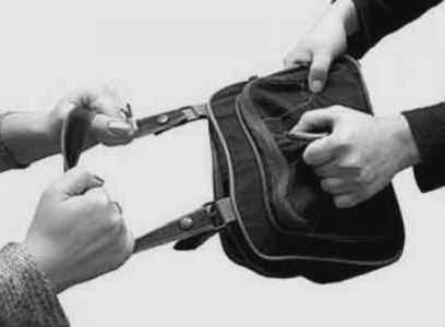 Брянские полицейские схватили уличного грабителя