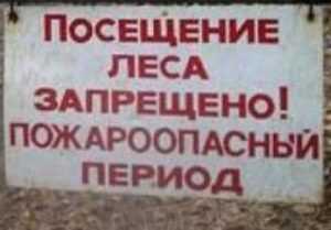 На Брянщине введён особый противопожарный режим