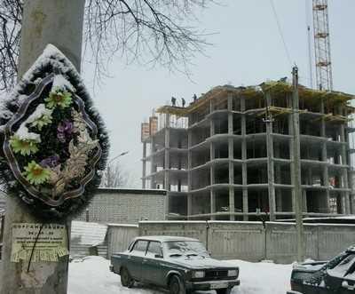 Фирма Огурцова незаконно спилила 45 деревьев в брянском аэропорту