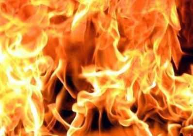 Арестованы двое брянцев, которые заживо сожгли знакомого в лесу
