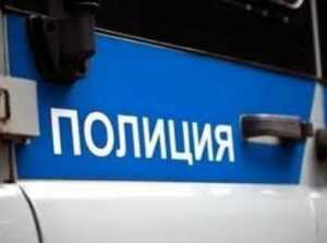 За нападение на полицейского брянец получил полтора года тюрьмы условно