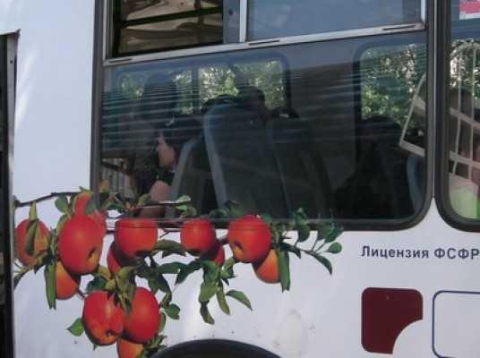 Брянские троллейбусники пожаловались на жадность маршруточников