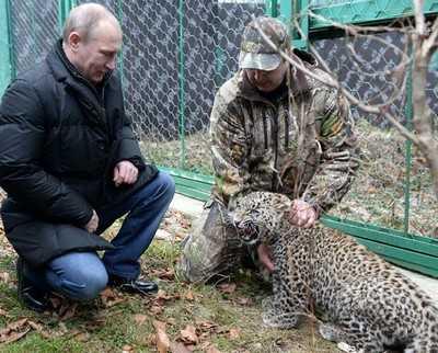 Действия Владимира Путина поддержали 86 процентов брянцев