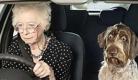 В Брянске столкнулись пенсионерки на «Сузуки» и «Рено»