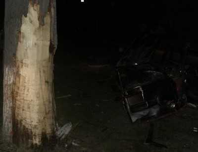 В Локте ночью разбился автомобилист, который врезался в дерево