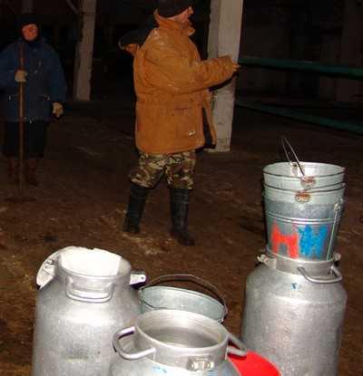 В Брянской области заканчивается молоко
