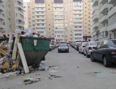 На улице Брянского фронта вице-губернатор сразился с мусором