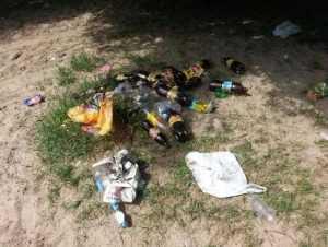 Брянские экологи очистят от мусора Бежицкий пляж