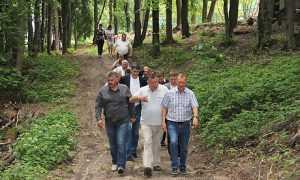 """Брянский губернатор велел развивать обрезаемый парк """"Соловьи"""""""