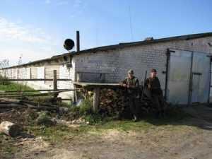 ОАО «Бежицкое» наказали за использование федерального телятника