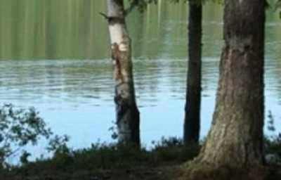В Почепе из реки подняли утопленника
