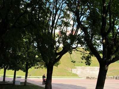 У Брянска украли парки, скверы и рощи