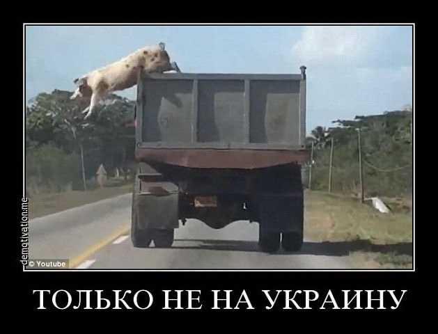 Украинцы явили сказочную версию проникновения «боевиков» через Брянск