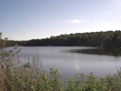 В озере под Брянском утонул еще один человек