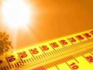 На Брянщину возвращается жара