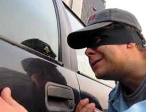 Брянская полиция обезвредила угонщика-рецидивиста