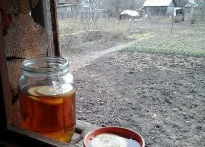 В Брянской области начались земельные бунты