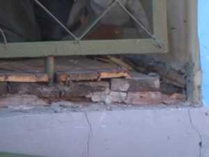 В брянском детсаду сотрудники МЧС уничтожили осиное гнездо