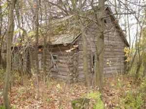 Жители брянской Злынки обвинены в чернобыльской афере