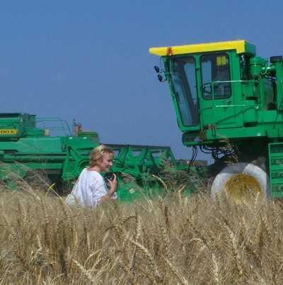 Жирятинский район получил рекордный урожай зерновых