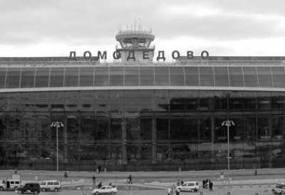 Брянец обокрал в аэропорту «Домодедово» пассажирку самолёта