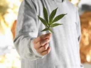 Арестованы брянские подростки, торговавшие марихуаной