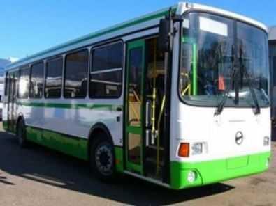 Брянская старушка разбила голову в автобусе