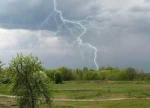 В Брянскую область возвращаются дожди с грозами