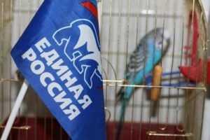 Ё-партия Прохорова заподозрила Брянск в фальсификациях