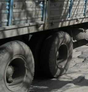 Брянская полиция задержала вымогателя, укравшего 150 литров солярки