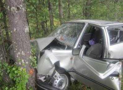 Брянец погубил пассажирку, на иномарке врезавшись в дерево