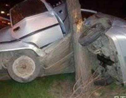 Брянец на «Лексусе» покалечил пассажиров, врезавшись в дерево