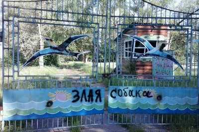 В Брянске загадочно исчезли 50 миллионов, выделенные детским лагерям