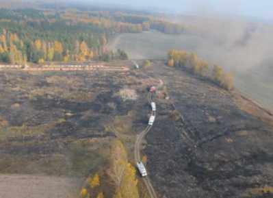 Тушить брянские пожары прибыли спасатели из Орла, Курска и Калуги