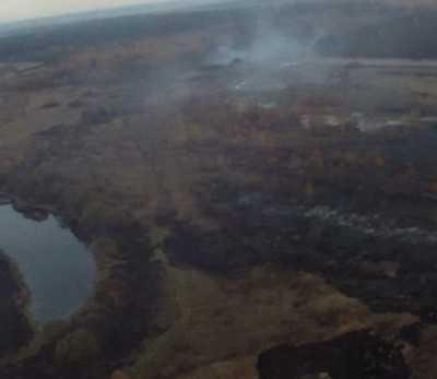 Брянские экологи обвинили в возгорании торфяников предпринимателей
