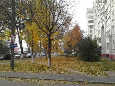 В Брянске удлинили участок одностороннего движения на улице Фокина