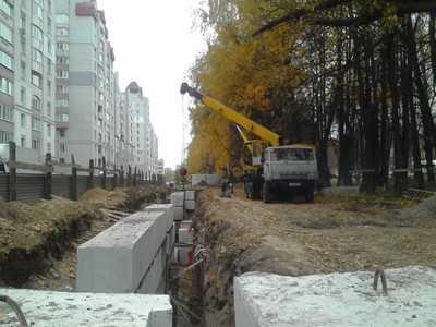 В Брянске на Рославльской начали уничтожать липы
