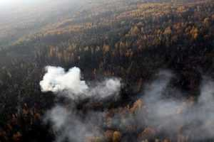 Брянск окутало дымом из Гордеевского района