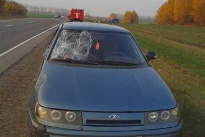 В Орловской области под колесами легковушки погиб брянец