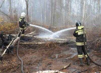 МЧС:  Борьба с природными пожарами на Брянщине почти завершена