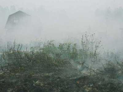 Дым от горящих брянских торфяников едва не погубил людей в двух ДТП