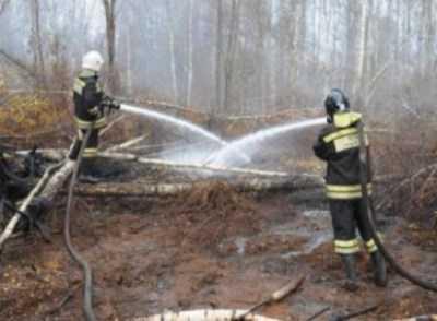 Брянское управление МЧС обвинили в попытках скрыть правду о пожарах
