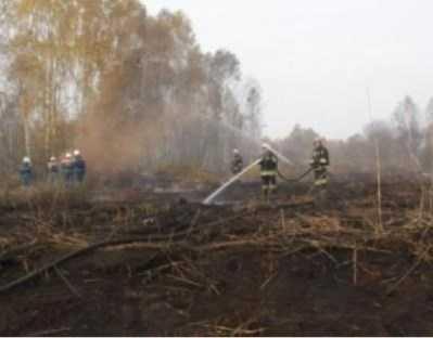 В Брянской области отменили особый противопожарный режим
